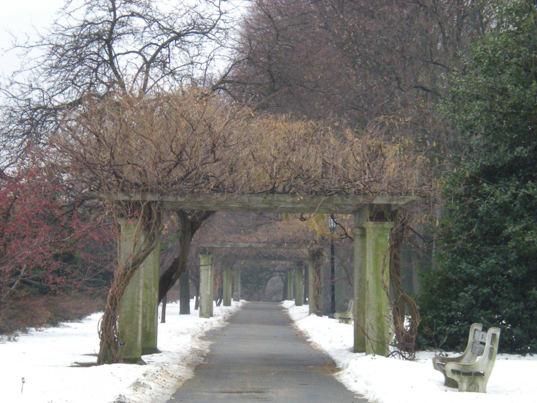 Brooklyn Botanical Garden Winter Hours Garden Ftempo