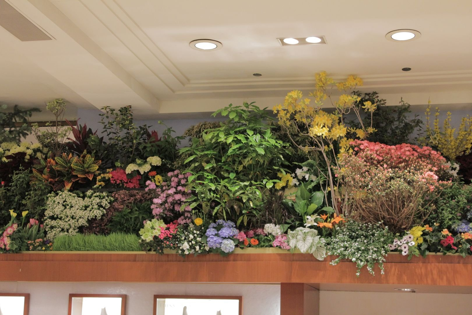 The Macy's Flower Show 2011 Towers of Flowers