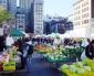 Healthy New York: Farmers Markets