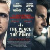 The Place Beyond the Pines: A LocalBozo.com Movie Review