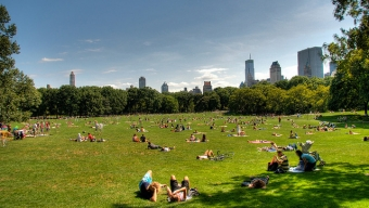 What To Do In NYC This Weekend – 8/16/13