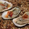 Finding the Pearls at Thrillist's 2015 'Empire Oyster'